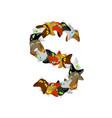 letter s cat font pet alphabet symbol home animal vector image