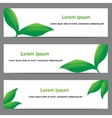 Banners with green leaves vector image