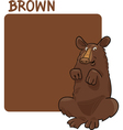 Color Brown and Bear Cartoon vector image vector image