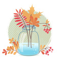 Greeting card with autumn leaves and berries vector image