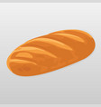 loaf of bread isolated vector image
