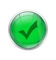 Green okay button vector image