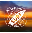 crossing surfing boards stamp with hand vector image