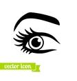 Eye icon 11 vector image
