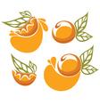orange juice and fruit sticker vector image vector image