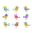 colorful cartoon birds vector image