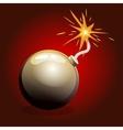 Dangerous Black Bomb vector image