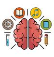 brain processes design vector image
