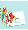 Tropical Flowers Pomegranates and Parrot Bird vector image