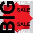 big sale announcement vector image