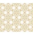 islamic pattern vector image