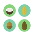 Set of icons nuts elements for design vector image