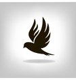 Black bird isolated with expanded wings vector image