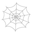 isolated spider web vector image