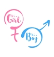 Its a boy or girl - baby shower invitation vector image