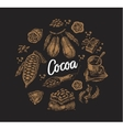 Set of Cocoa Elements vector image