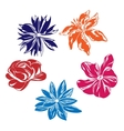 Five multi-colored flowers vector image