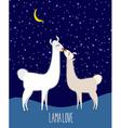 Llama Alpaca Two cute llama Kiss at night under vector image