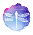 hand drawn dragonfly on watercolor background vector image
