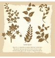 Vintage poster design with branches vector image
