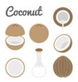 coconut icon vector image