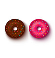 pink and chocolate donuts vector image