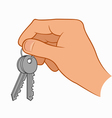 Hand holding house keys vector image