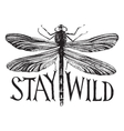 Black dragonfly with hand drawn lettering vector image