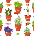 seamless texture with herbs planted in pots and vector image