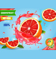 grapefruits juice advertising citrus fruit fresh vector image