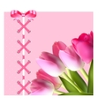 Vintage Frame with Bow Ribbon and Tulip Folwers vector image