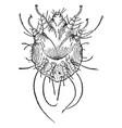 Itch mite vintage vector image