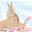 Easter bunny in the hand vector image