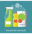 Household Chemical Flat Design vector image