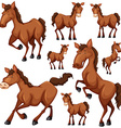Set of brown horse in many positions vector image