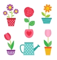 set of flowers in pots and watering can vector image