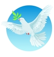 White dove holding green twig International Peace vector image