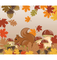 Autumn background with squirrel vector image