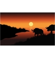 Bison silhouette in riverbank vector image