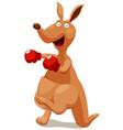 kangaroo vector image vector image