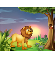 A lion watching a squirrel vector image vector image