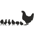 Chicken family with young vector image