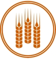 round icon with wheat ears vector image