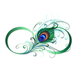 Infinity Symbol with Peacock Feather vector image