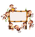 frame template with monkeys vector image