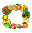square frame of tropical fruits with empty place vector image