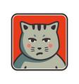 cute sad grumpy cat icon cat avatar vector image