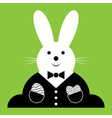 Easter bunny with suit and eggs vector image