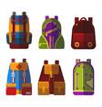 isolated bag or rucksack satchel or handbag vector image