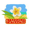 tropical concept with plumeria flower vector image